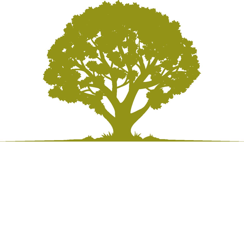 Wimberley Getaways